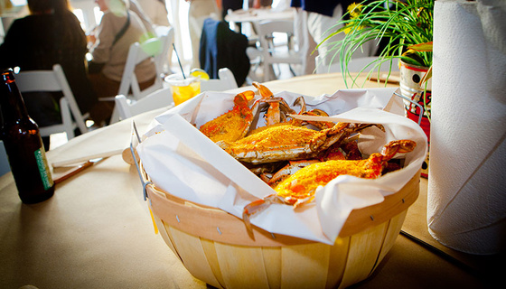 seafood catering at tavern bayside